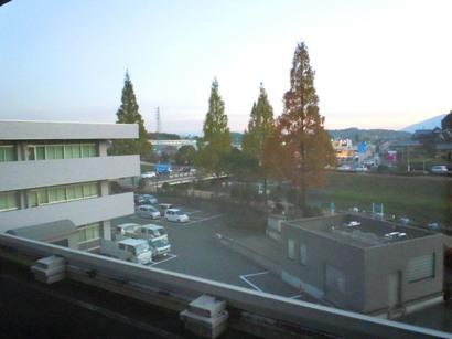 2011.11.29-6.JPG